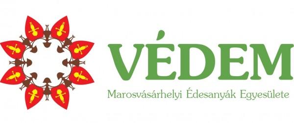 Logo VEDEM Final1